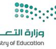 وزارة التعليم توفر أكثر من 10000 وظيفة تعليمية للجنسين