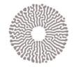 مشروع أمالا الوطني يعلن وظائف تقنية وإدارية شاغرة
