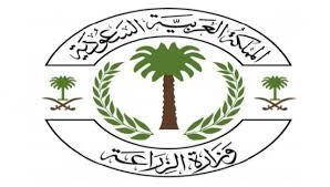 وزارة الزراعة تعلن 14 وظيفة شاغرة على نظام الوظائف المؤقت في إدارة المختبرات البيطرية