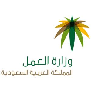 وزارة العمل تطلق برنامج صيفي التدريبي للطلاب بالتعاون مع الموارد البشرية