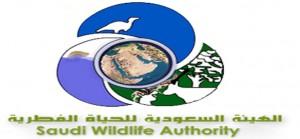 مسابقة وظائف إدارية وفنية  للرجال بالهيئة السعودية للحياة الفطرية