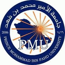وظائف اكاديمية شاغرة للجنسين بجامعة الأمير محمد بن فهد بمدينة الخبر